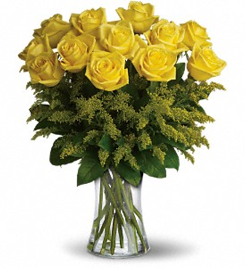 One dozen long stem yellow roses mightylinksfo Gallery