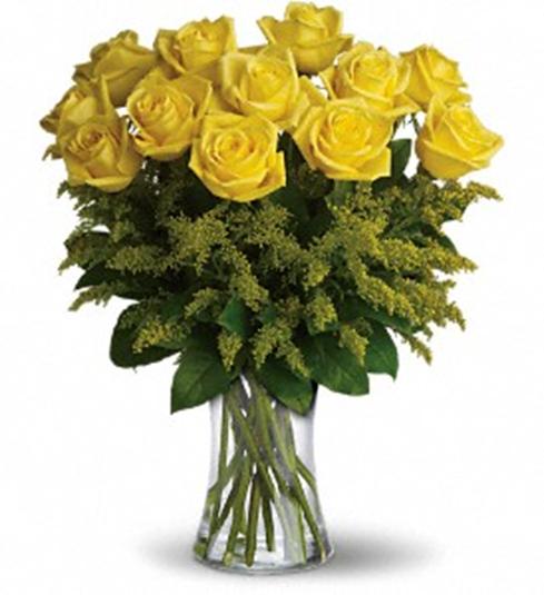One dozen long stem yellow roses mightylinksfo